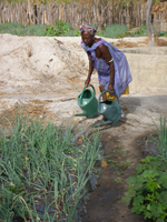 Climate-Resilient Irrigation and Water Manage